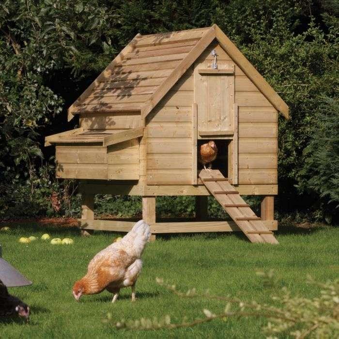 לול תרנגולות מעץ