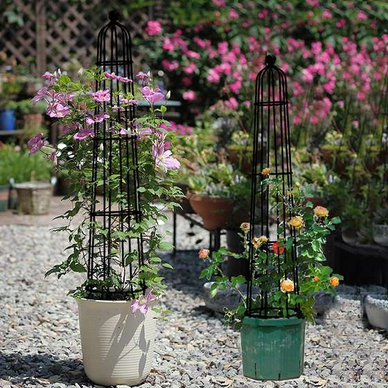 סט שתי יחידות אובליסק מתכת לצמחים מטפסים